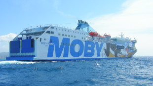 Moby Tommy